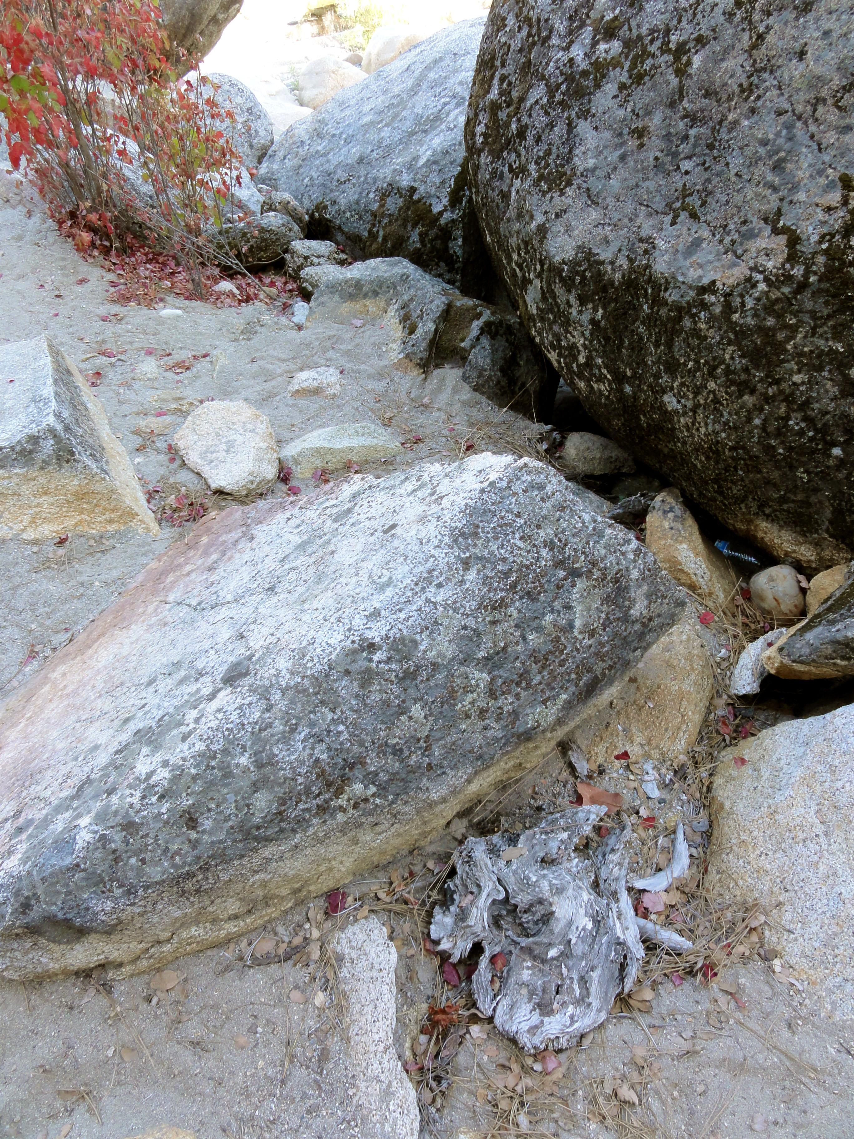 yubawoodrock